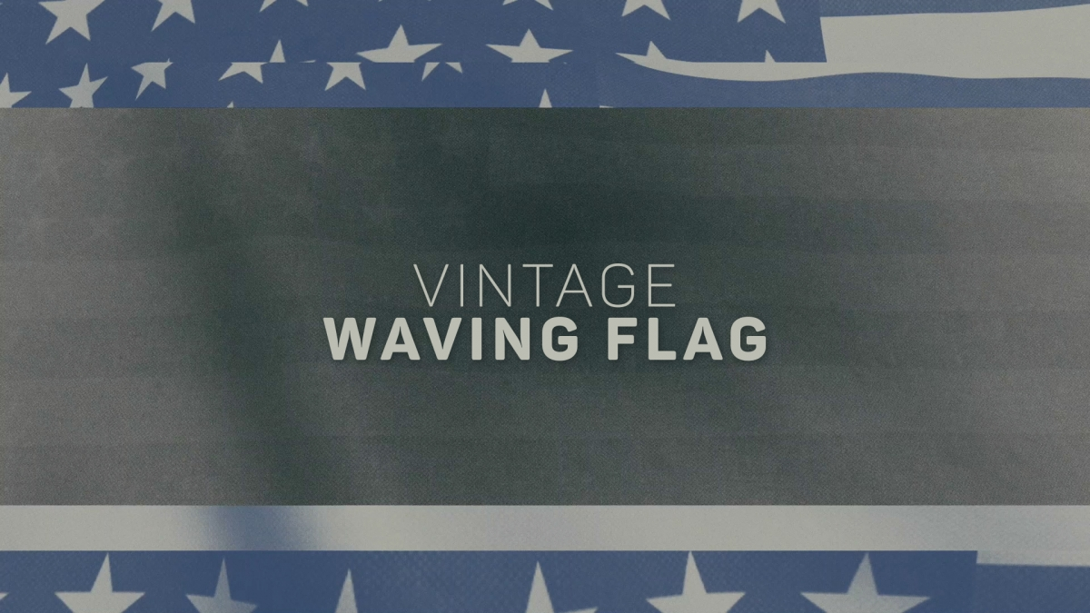 Vintage Waving Flag